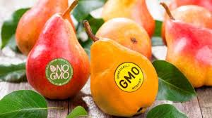 1541927164-gmo.png